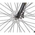 Prophete E-Bike »eSport«, 10 Gang, Shimano, Deore, Mittelmotor 250 W