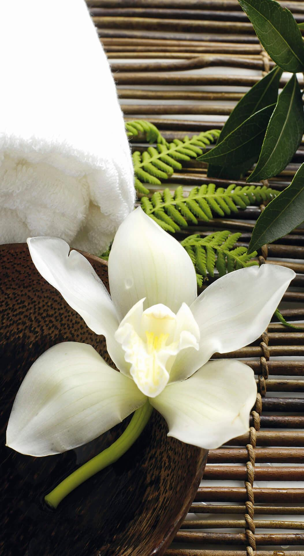 Vliestapete Wellness Orchidee Technik & Freizeit/Heimwerken & Garten/Bauen & Renovieren/Tapeten/Fototapeten/Fototapeten Blumen