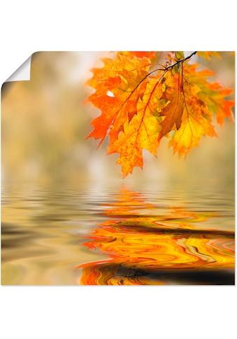 Artland Wandbild »Herbstblatt«, Blätter, (1 St.), in vielen Größen & Produktarten -... kaufen