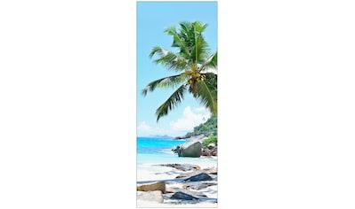 MySpotti Spritzschutz »fresh F1 Seychellen«, 100 x 255 cm kaufen