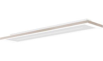 EVOTEC LED Deckenleuchte »ZEN«, LED Deckenlampe kaufen