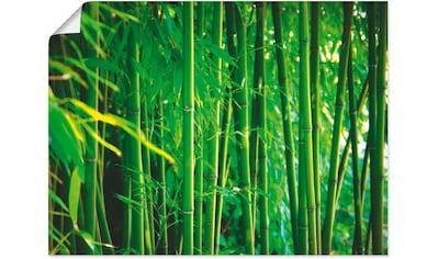 Artland Wandbild »Bambus I«, Gräser, (1 St.), in vielen Größen & Produktarten... kaufen