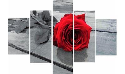Home affaire Wandbild »RUMIN / Rose on the floor« kaufen