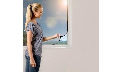 Windhager Insektenschutz-Fenster, BxH: 130x150 cm kaufen