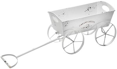 locker Blumentopf »Leiterwagen« kaufen