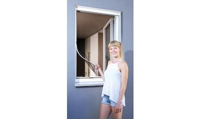 SCHELLENBERG Insektenschutz - Fenster »Magnet«, BxH: 120x120 cm, weiß kaufen