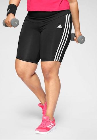 adidas Performance Shorts »WOMEN MUST HAVE COTTON SHORT« kaufen