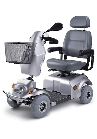 DIETZ® REHA-PRODUKTE Elektromobil »Agin«, 450 W, 10 km/h, 10 km/h kaufen