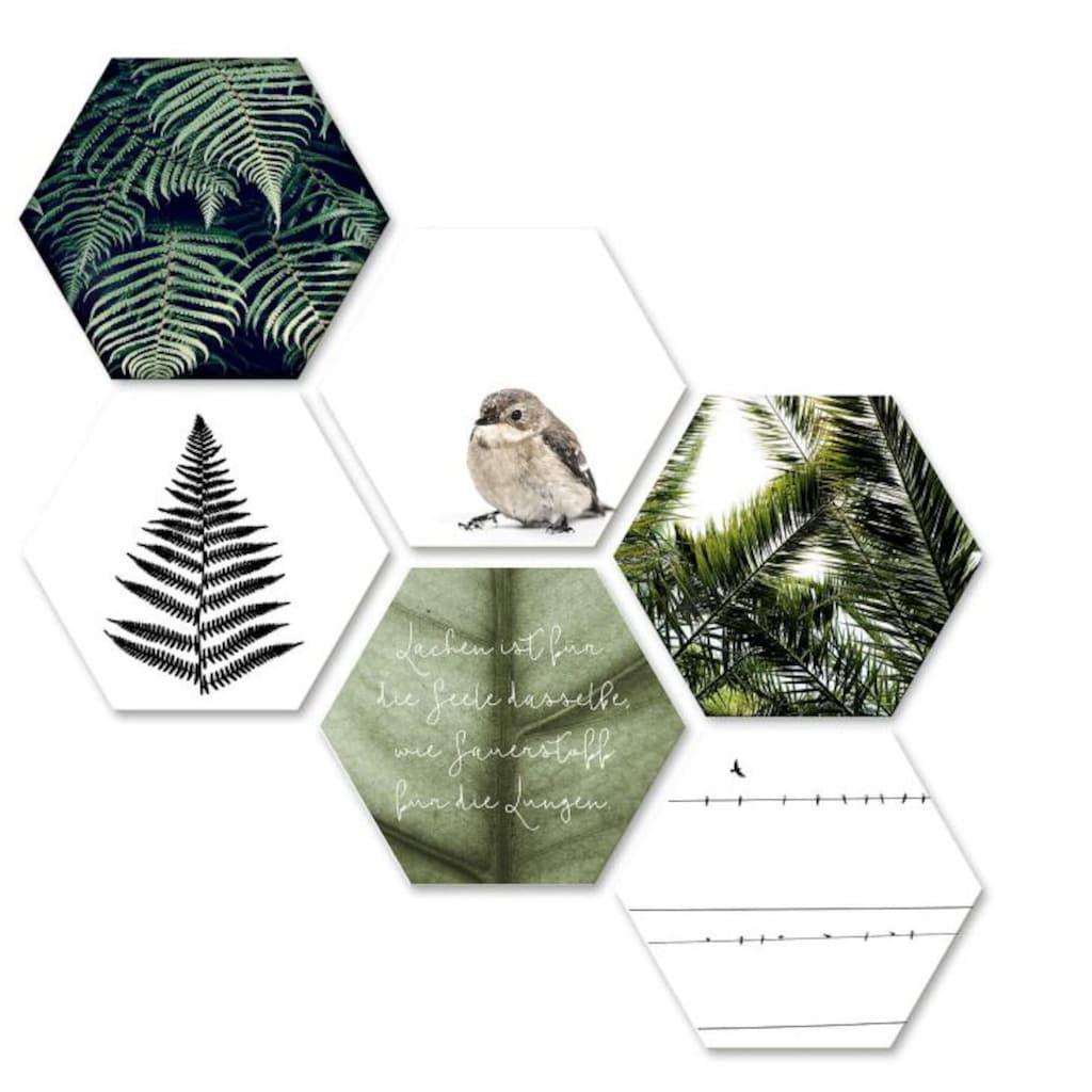 Wall-Art Mehrteilige Bilder »Natürliche Vielfalt Collage«, (Set, 6 St.)