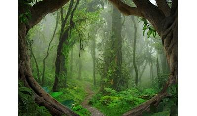 LIVINGWALLS Fototapete »Designwalls Tropical Forest«, Premium Vlies kaufen