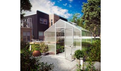 KGT Gewächshaus »Lilie IV«, BxTxH: 297x429x268 cm, silber, inkl. Regenrinne kaufen