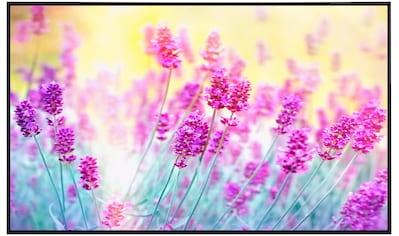 Papermoon Infrarotwandheizung »Lavendelblume«, sehr angenehme Strahlungswärme kaufen