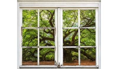 queence Wandsticker »Baum« kaufen