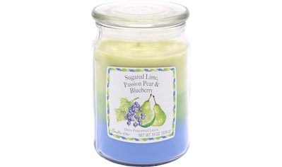"""Candle - lite™ Duftkerze """"Three - Layer Jars  -  Sugared Lime, Passion Pear, Blueberry"""", (1 - tlg.) kaufen"""