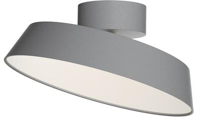 design for the people LED Deckenleuchte »ALBA«, LED-Modul, Warmweiß, Dimmbar, inkl.LED Modul 12W, Stromsparend, Langlebig, Schirm schwenkbar kaufen