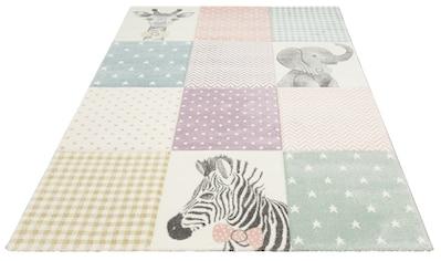Lüttenhütt Kinderteppich »Wilde Tiere«, rechteckig, 13 mm Höhe, Hoch-Tief Effekt kaufen