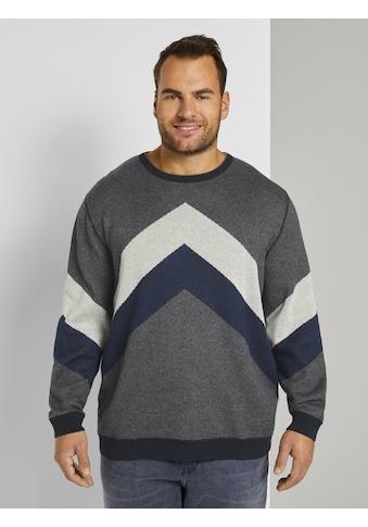 TOM TAILOR Men Plus Strickpullover »strukturiertes Sweatshirt« kaufen