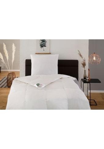 Hanse by RIBECO Federbettdecke + Kopfkissen »Natural HYBRID®«, (Spar-Set), Mit hoher Bauschkraft durch Daunen- & Fasermischung! kaufen