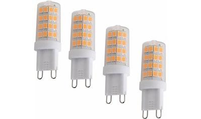 "näve »LED Leuchmittel G9/4W 4er - Set ""Mina""« LED - Leuchtmittel, G9, Warmweiß kaufen"