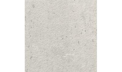 PARADOR Wandpaneel »ClickBoard - Beton«, grau kaufen