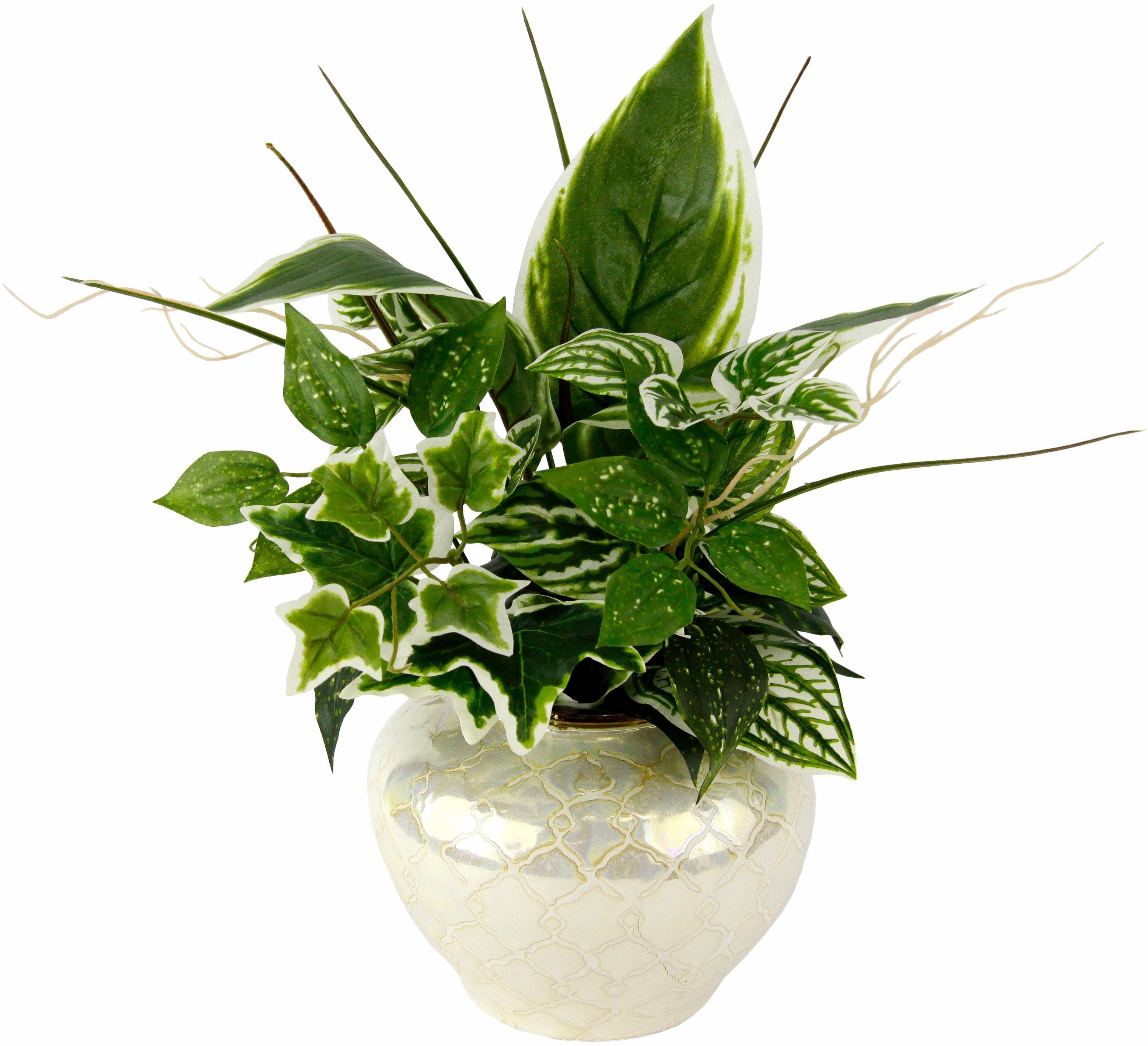 Kunstpflanze Mixed-Hostabusch in Vase Technik & Freizeit/Heimwerken & Garten/Garten & Balkon/Pflanzen/Zimmerpflanzen