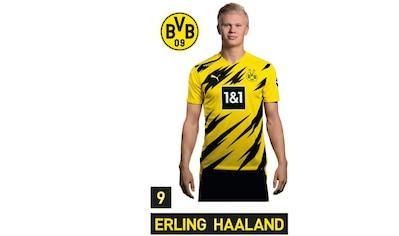 Wall-Art Wandtattoo »BVB Haaland Portrait 2020/2021« kaufen