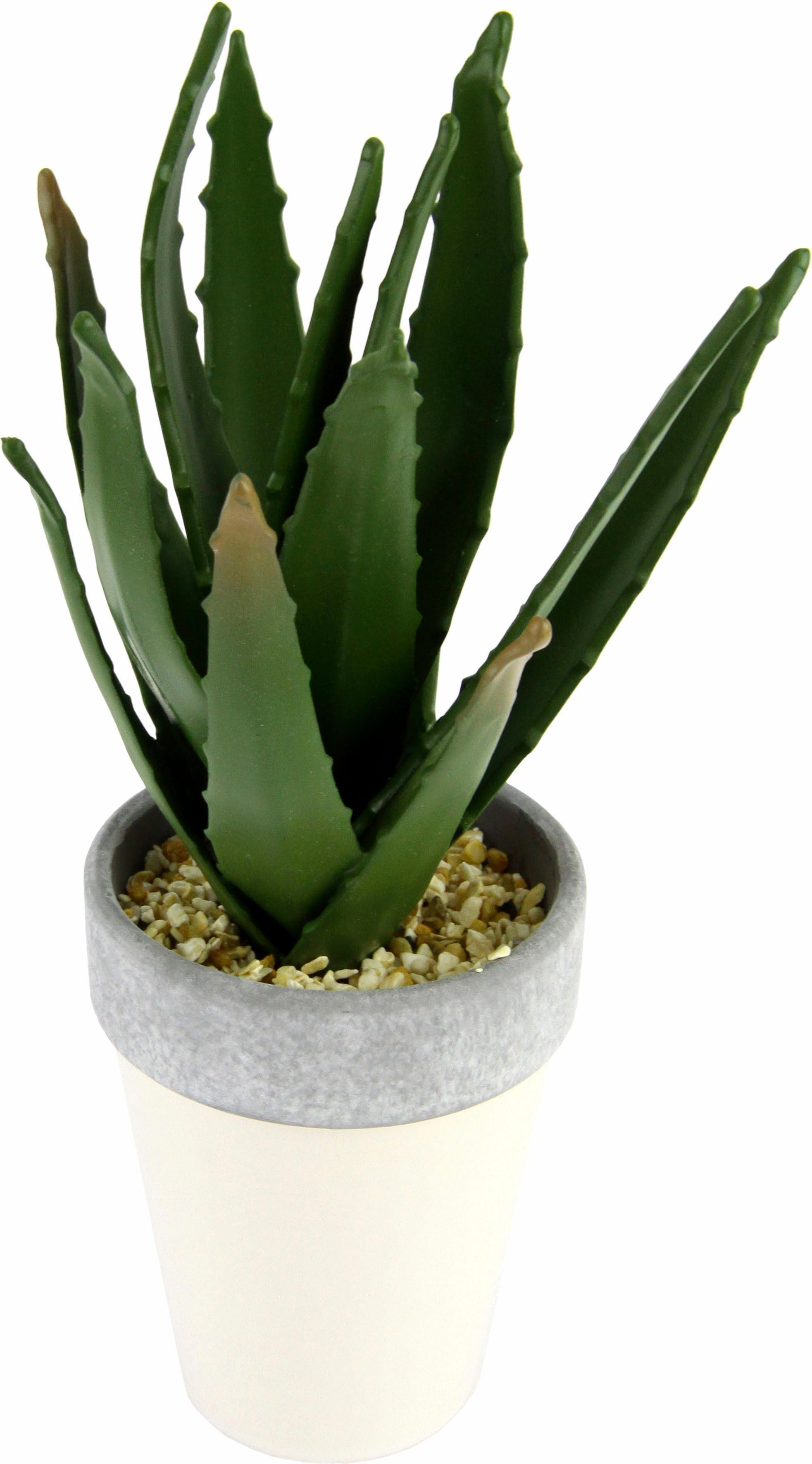I.GE.A. Kunstpflanze Agave in Topf 27/12 cm grün Künstliche Zimmerpflanzen Kunstpflanzen Wohnaccessoires