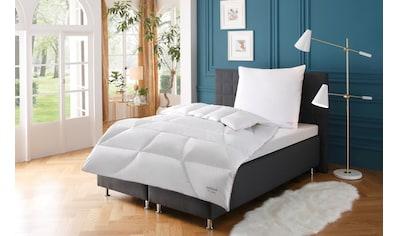 QUEENS TEXTILES Daunenbettdecke »Jubiläum«, warm, (1 St.), hochwertiges Naturprodukt kaufen