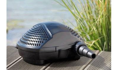 PONTEC Filter -  und Bachlaufpumpe »PondoMax Eco 5000« kaufen
