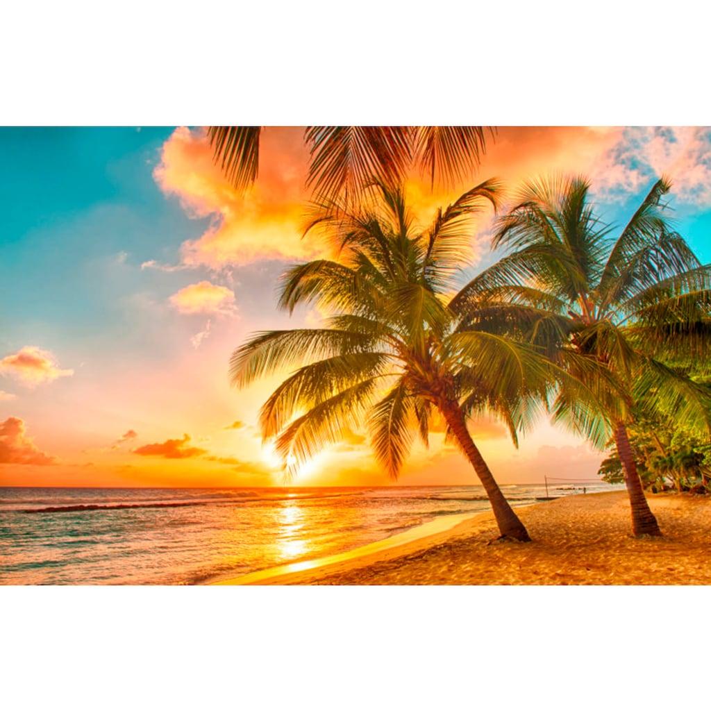 Papermoon Fototapete »Barbados Palm Beach«, matt, Vlies, 5 Bahnen, 250 x 180 cm