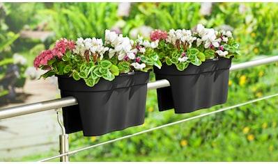 KHW Pflanztopf »Flowerclip XXL«, 2er - Set, BxTxH: 57,5x27,7x27 cm kaufen