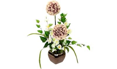 I.GE.A. Kunstblume »Arrangement Allium«, Topf aus Keramik kaufen