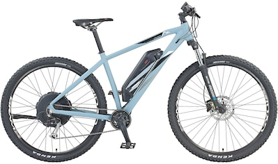 Prophete E - Bike 9 Gang Shimano Alivio Schaltwerk, Kettenschaltung, Heckmotor 250 W kaufen