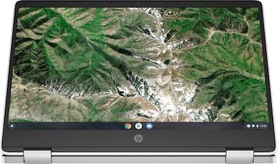 "HP Chromebook »14a-ca0218ng«, (35,6 cm/14 "" Intel Pentium Silber UHD Graphics 605\r\n) kaufen"
