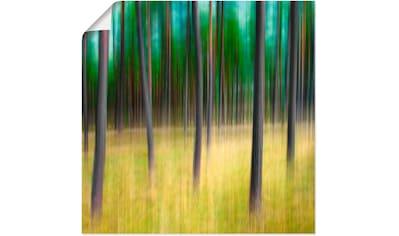 Artland Wandbild »Kiefernbäume«, Bäume, (1 St.), in vielen Größen & Produktarten -... kaufen