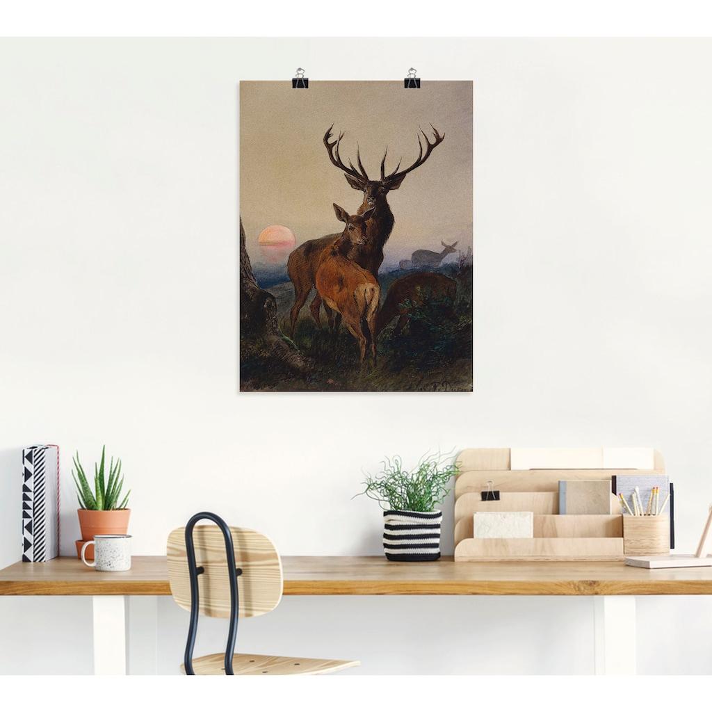 Artland Wandbild »Hirsch und ein Reh bei Sonnenuntergang«, Wildtiere, (1 St.), in vielen Größen & Produktarten -Leinwandbild, Poster, Wandaufkleber / Wandtattoo auch für Badezimmer geeignet