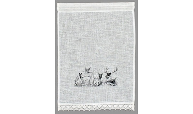 Scheibengardine, »Bambi«, HOSSNER  -  ART OF HOME DECO, Stangendurchzug 1 Stück kaufen