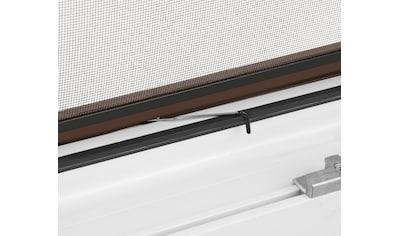 hecht international Insektenschutz - Fenster »MASTER SLIM«, braun/anthrazit, BxH: 80x100 cm kaufen