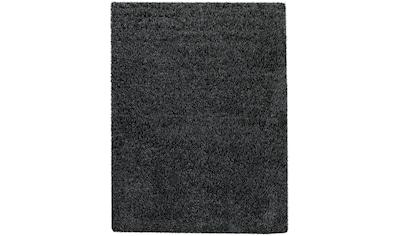 Hochflor - Teppich, »Tripova«, my home, rund, Höhe 45 mm, maschinell gewebt kaufen
