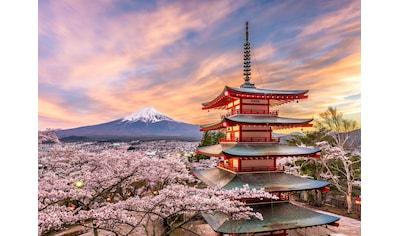 Papermoon Fototapete »Fujiyoshida Chureito Pagoda Japan« kaufen