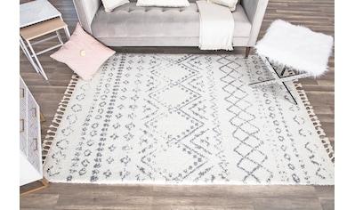 CosmoLiving by Cosmopolitan Teppich »Mason Shag«, rechteckig, 22 mm Höhe, mit Fransen, Wohnzimmer kaufen
