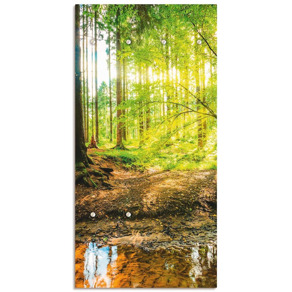 Artland Garderobe »Wald mit Bach«, platzsparende Wandgarderobe aus Holz mit 6 Haken, geeignet für kleinen, schmalen Flur, Flurgarderobe