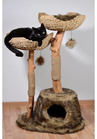 DOBAR Kratzbaum »Tony«, BxTxH: 60x45x104 cm kaufen