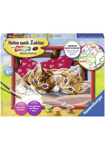Ravensburger Malen nach Zahlen »Zwei Schmusekätzchen«, Made in Europe kaufen