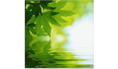 Artland Glasbild »Grüne Blätter reflektieren im Wasser«, Blätter, (1 St.) kaufen