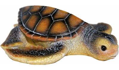 Casa Collection by Jänig Tierfigur »Wasserschildkröte« kaufen