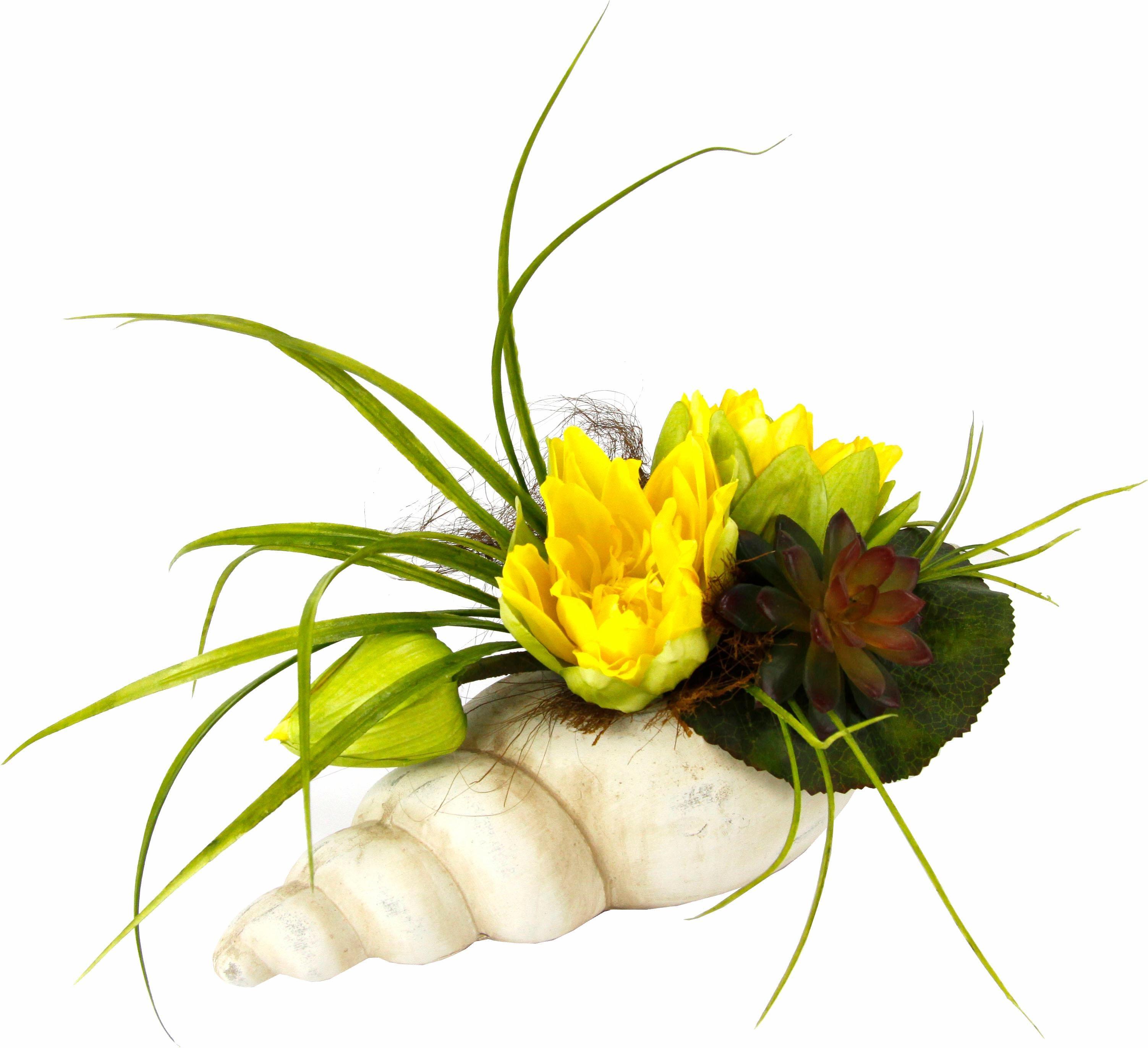 Kunstpflanze Gesteck Seerose in Muschel Wohnen/Accessoires & Leuchten/Wohnaccessoires/Kunstpflanzen/Künstliche Zimmerpflanzen