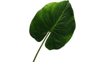 Creativ green Kunstzweig »Cannablatt« kaufen