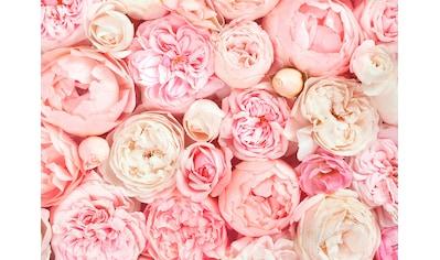 living walls Fototapete »Designwalls Roses« kaufen