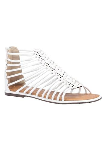 Divaz Sandale »Damen Gemma Gladiator Zip« kaufen
